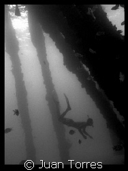 B &amp; W of snorkeler in Crash Boats Piers, Puerto Rico by Juan Torres 